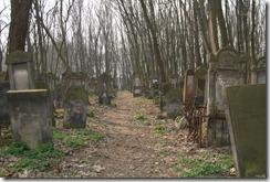 oldgraveyard