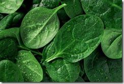 leafy_veg_stores
