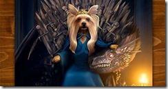 pet_game_of_thrones
