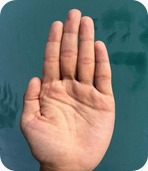 palm_of_hand